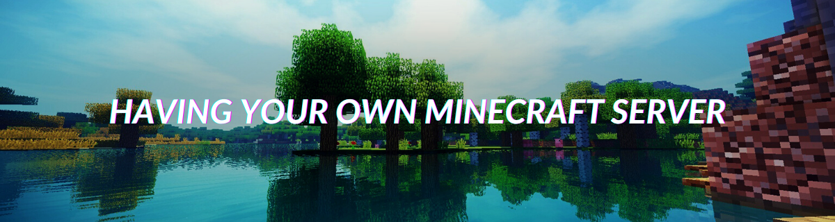 Having Your Own Minecraft Server